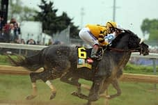 Mylute and Rosie Finished 5th at the Kentucky Derby 2013